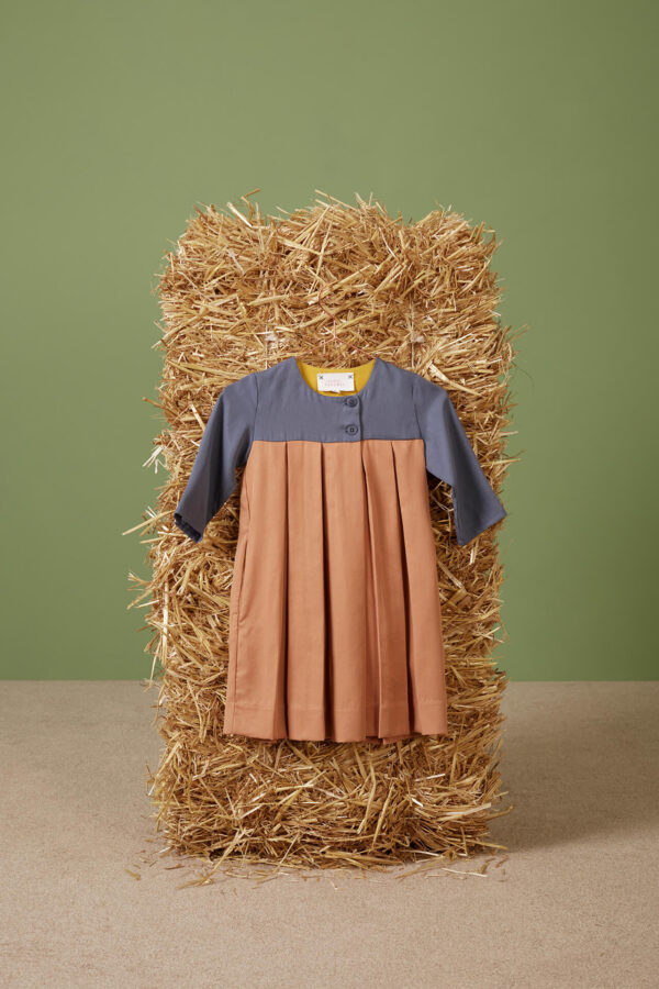 Brigitta Dress Pigeon Blue and Copper Tan